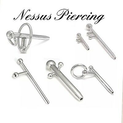 piercing prince albert forum