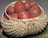 Commonwealth Basket Blue Ridge Basket Kits, Potato Basket, 7-inch By 12-inch By on Sale