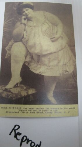 3-Reproduction Miss Cherrie Fat Woman Postcards~Circus Side Show~Coney Island