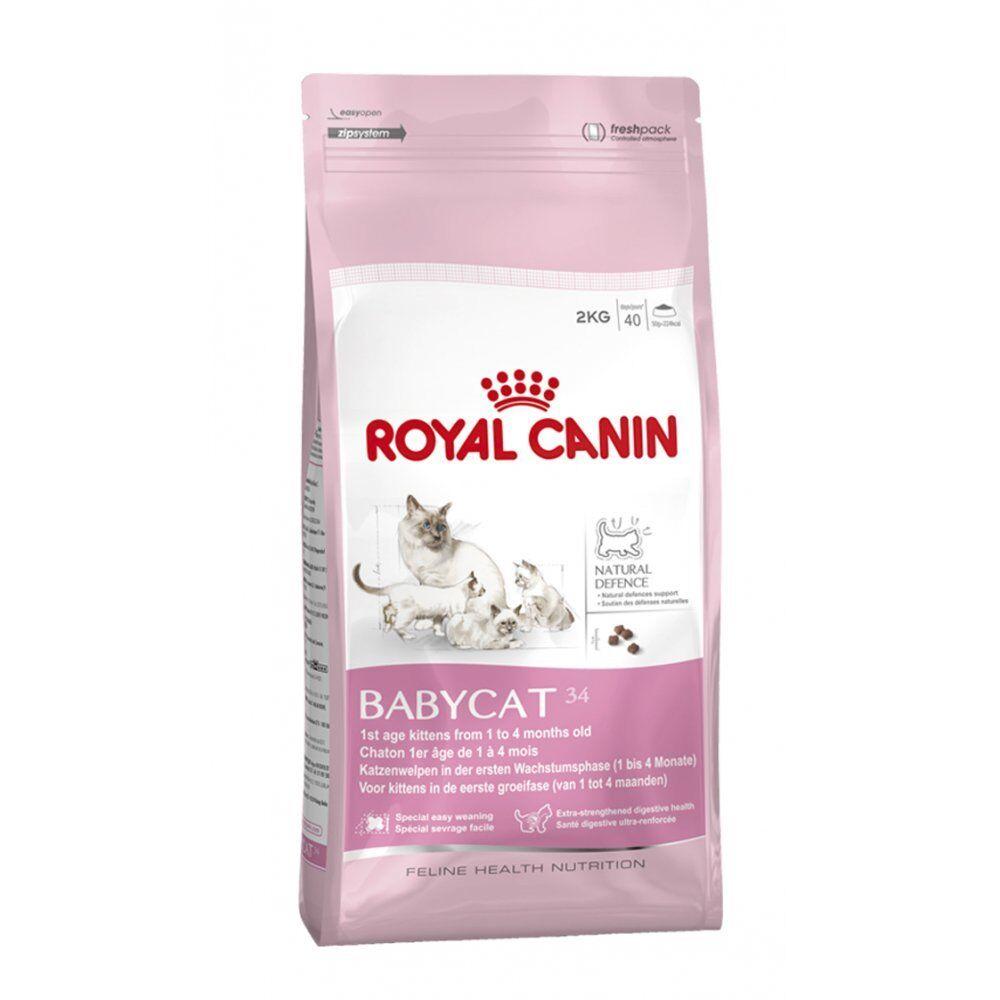 ROYAL CANIN Babycat 34 COMPLETO Cucciolo gatto cibo secco 4kg