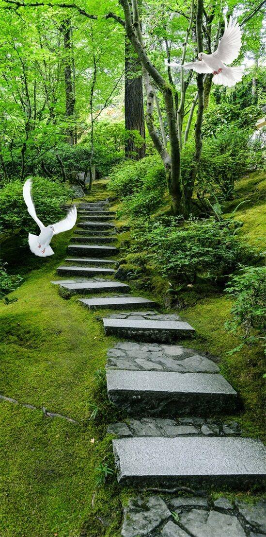 3D Der Wald Spur 53 Stair Risers Dekoration Fototapete Fototapete Fototapete Vinyl Aufkleber Tapete DE d17534