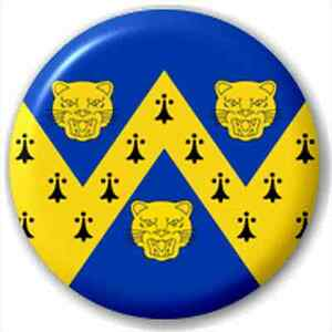 Small-25mm-Lapel-Pin-Button-Badge-Novelty-Shropshire-Flag