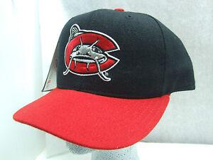 New Era 59 50 Carolina Mudcats Fitted Baseball