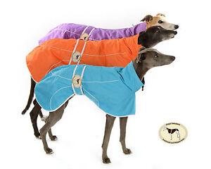 Waterproof-Rain-Mac-Rain-Coat-for-Greyhounds-Whippets-amp-Italian-greyhounds