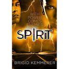 Spirit by Brigid Kemmerer (Paperback, 2015)