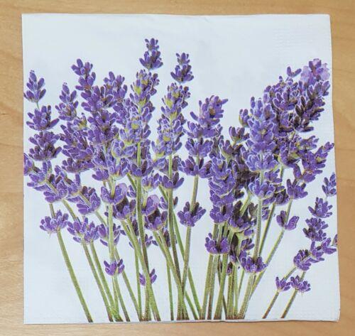 Vintage Floral Servilletas Decoupage Arte Arte de la naturaleza de madera 3ply 33x33