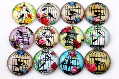 25 mm Handmade glass cabochonsMélange Cage à oiseaux Designs10pcs