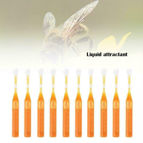 10X Bee Swarm Attractant Lures Bait Trap Beekeeping Honey Fruits Set Tool A5X9