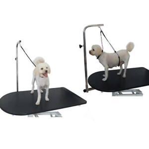 Pet-Dog-Cat-Grooming-Table-Bath-Adjustable-Restraint-Rope-Harness-Noose-Loop-US