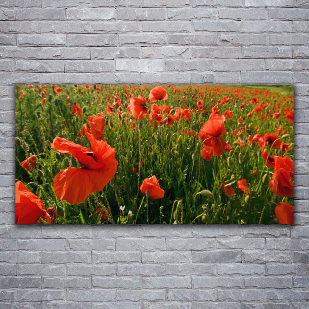 Canvas print Wall art on 120x60 Image Picture Poppies Nature