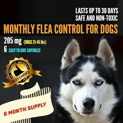 6 Monthly Capsules Flea Egg Killer 205mg Dogs 21-45 lbs FAST FREE SHIP