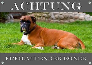 Bouclier en métal pour chien - boxer allemand de qualité supérieure