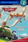 Dusty Flies High by Susan Amerikaner (Hardback, 2013)