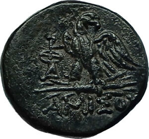 AMISOS-in-PONTUS-Mithradates-VI-the-Great-Ancient-Greek-Coin-ZEUS-EAGLE-i66452