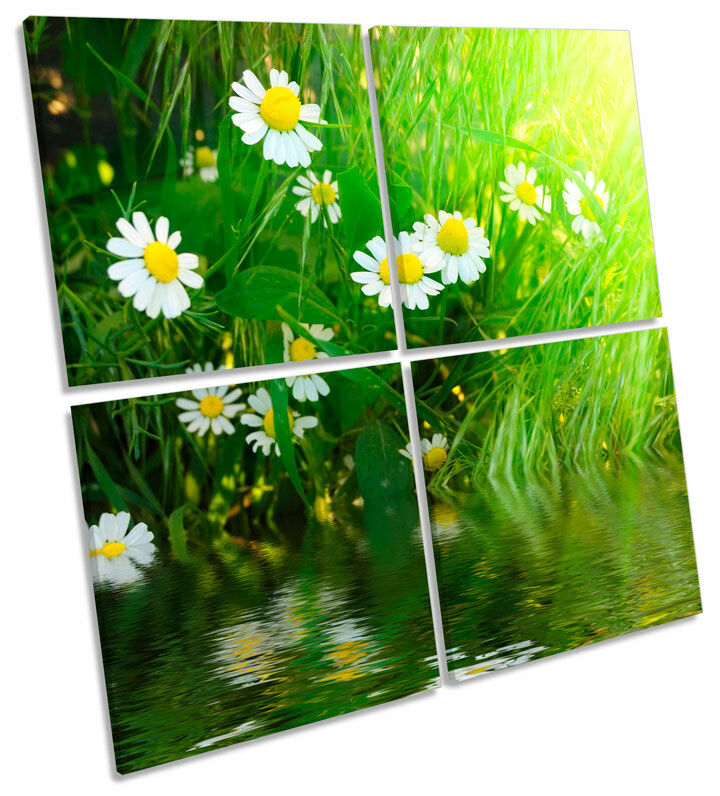 Daisy Flower Floral Sunshine MULTI CANVAS Wand Kunst Square Bild