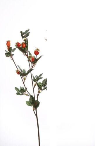 Bacche di rosa canina Ramo Ibisco ramo Arte Pianta 70 cm 186129 f23 ARANCIO