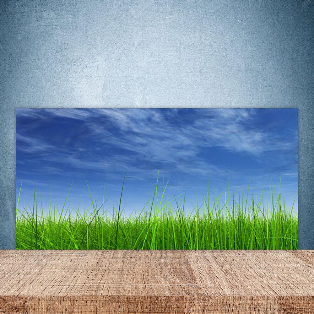 Crédence de cuisine en verre Panneau Paroi 100x50 Nature Ciel Herbe