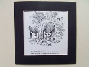 NORMAN-THELWELL-HORSE-PONY-CARTOON-PRINT-DATE-1962-8-034-x8-034-MOUNT-READY-TO-FRAME