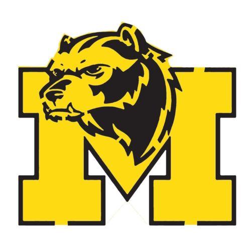 Michigan Wolverines 10 Mil Mylar Reusalble Pattern