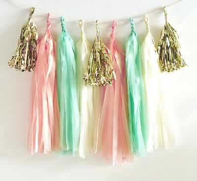 DIY Tassel Garland Sweet 16 Quinceanera Birthday Party Photo Backdrop Decoration