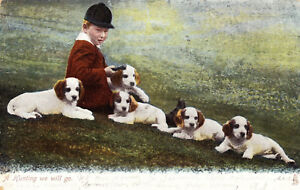 Antique-1906-Postcard-Tucks-Animal-Life-Series-1416-Hunting-We-Will-Go-Dogs-D22