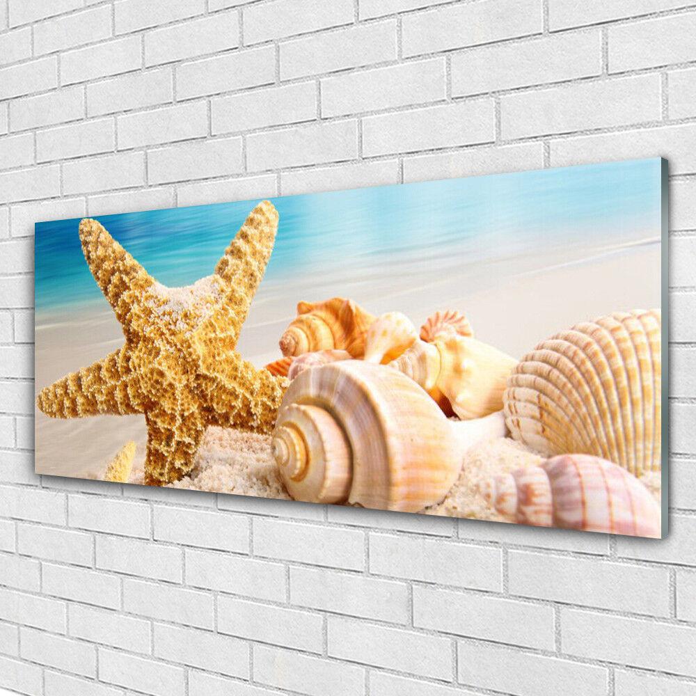 Impression sur verre Wall Art 125x50 Photo Image étoile de mer coquillages art
