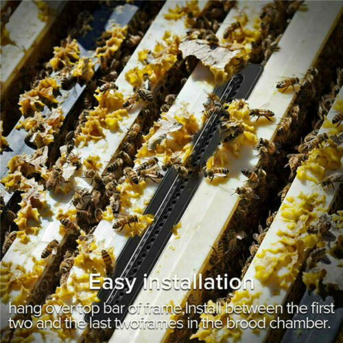 20PCS Small Bee Hive Beetle Blaster BeeHive Beetle Trap Beekeeping Tools Plastic