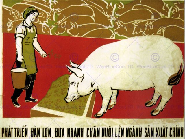 PROPAGANDA POLITICAL ECONOMY YOUTH FRUIT FOOD PRODUCE VIETNAM ART PRINT BB2553B