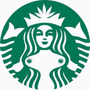 starbucks marijuana pasties vinyl sticker weed coffee pot leaf cookie cutters pot leaf polo