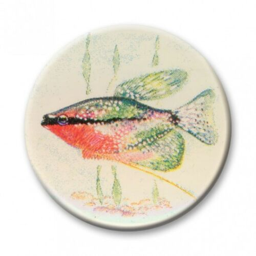 FISHING TROPHY CENTRES 2.5cm Fits Standard Trophies /& Medals Acrylic Inserts
