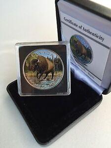 2013-Canada-5-999-1-Oz-Silver-Maple-Leaf-Wildlife-Wood-Bison-Full-Color-COA