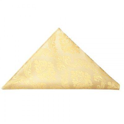 Energico Cravatte R Us Gold Paisley Fazzoletto Da Taschino Fazzoletto Hanky Matrimonio-mostra Il Titolo Originale