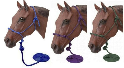 Tough-1 Nylon Twisted Crown Training Halter with 14/' Lead Horse Tack  50-1095