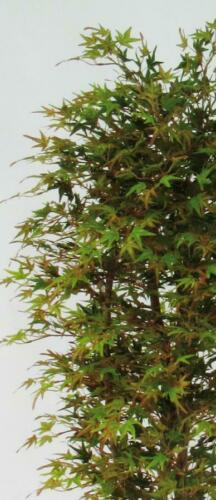 Maple Autumn Leaves Foliage fake Plant Artificial Plants Inside