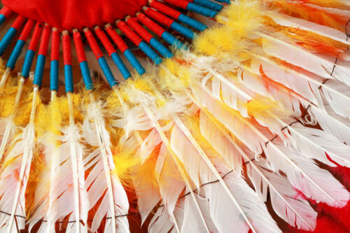 WHITE Turkey Pointers Primary Wing Quill Large Feathers Craft Costume 6 Pieces