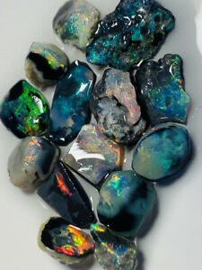 Australian-Rough-BLACK-Opal-L-Ridge-RED-All-the-Colours-31-5cts-WC1511-Video