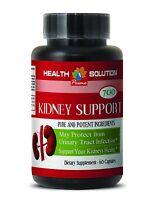 Organic Diuretic - Kidney Support 700mg - Potent Body & Kidney Cleanser - 1bot