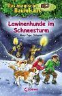 Das magische Baumhaus 44. Lawinenhunde im Schneesturm von Mary Pope Osborne (2012, Gebundene Ausgabe)