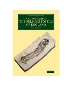 William-King-034-a-Monograph-of-the-Permian-Fossils-of-England-034