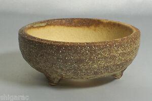 """Bonsai Pot Shigaraki Stoneware /""""Black Square Mini/"""" w5cm small Planter Japanese"""