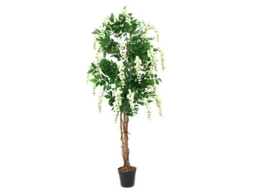 150cm-art plante EUROPALMS goldregenbaum blanc