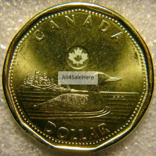 2016 Canada $1 Dollar Regular Loon Loonie Coin Brilliant Uncirculated from Set