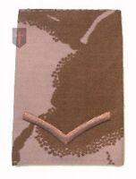 Lance Corporal LCPL Desert DPM Rank Slide (New Official
