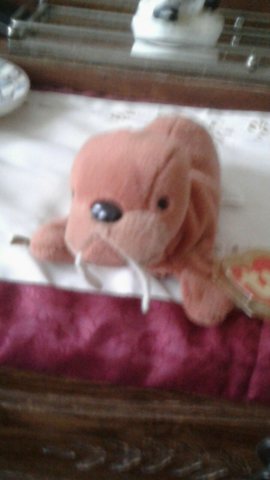3RD GENERATION TY BEANIE BABY TUSK the Walrus1st Generation Tush Tag
