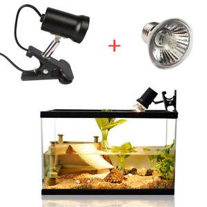 30/50W Reptiles Tortue Lumière Courbe UVA + UVB Lampe Chauffante + Lampe 3.0 HC