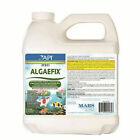 API AAP169D-38_4800 Algae Control Solution - 64Oz.