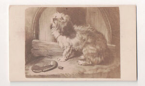 Vintage-CDV-Album-Filler-Titled-No-Place-Like-Home-Cute-Puppy