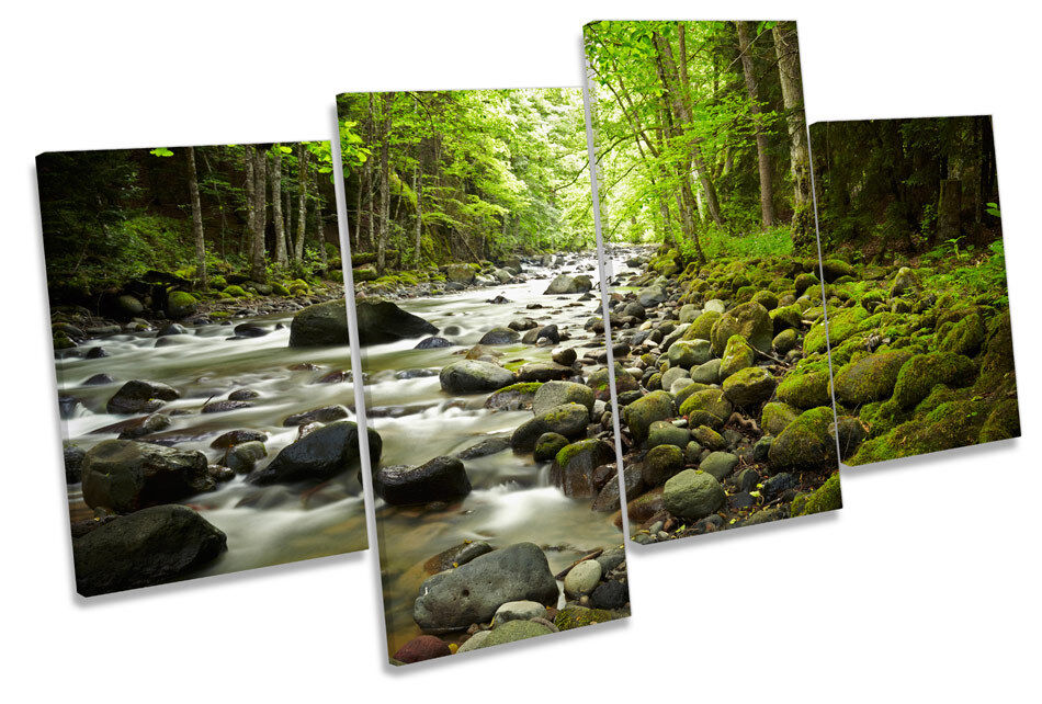 Forest Stream River Woods MULTI CANVAS Wand Kunst Framed Panel