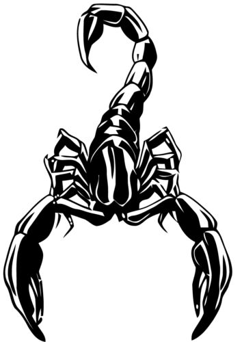 A large scorpion decal or vinyl cut sticker that is glossy black.