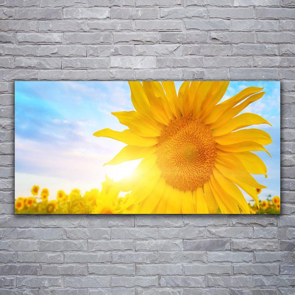 Photo sur toile Tableau Image Impression 120x60 Floral Tournesol